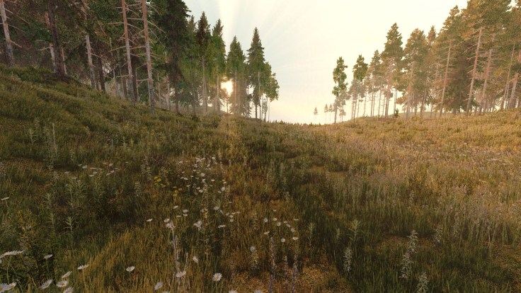 life_is_feudal_forest.jpg