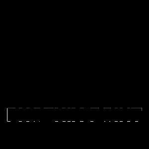 Phoenix-Point-Logo